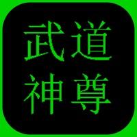 武道神尊游戏无限钻石