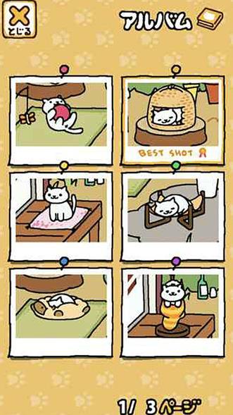 猫咪后院破解版图3