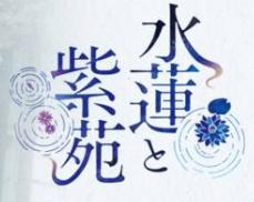 水莲和紫苑krkr汉化版